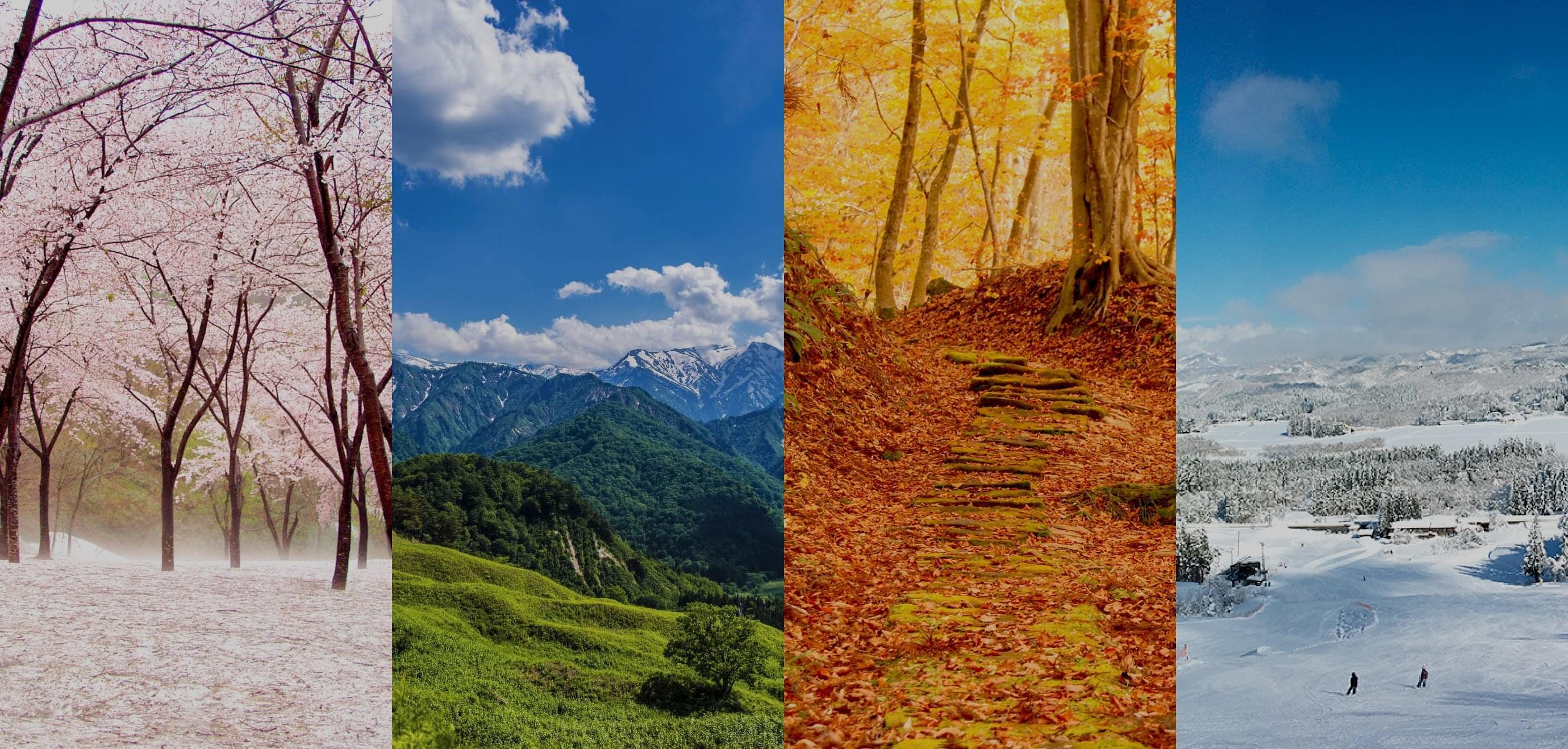 四季の背景