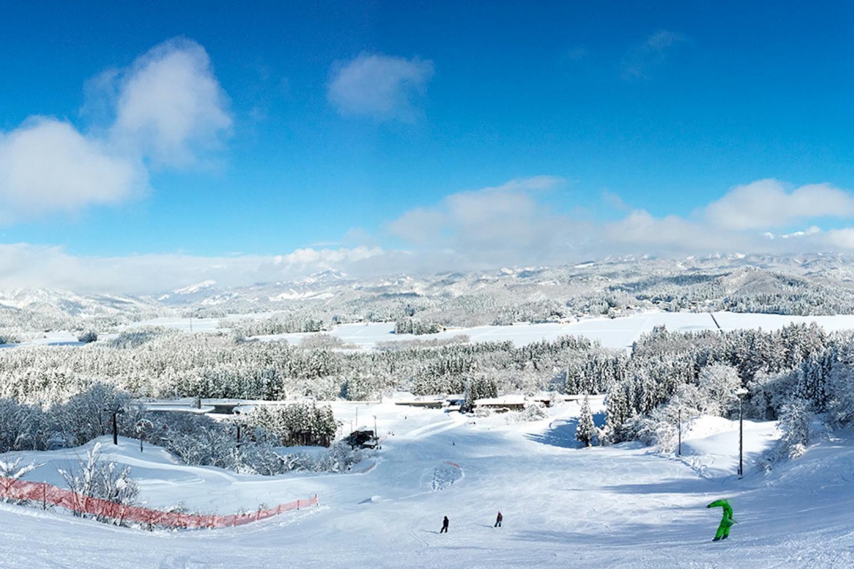 白い森の冬を満喫