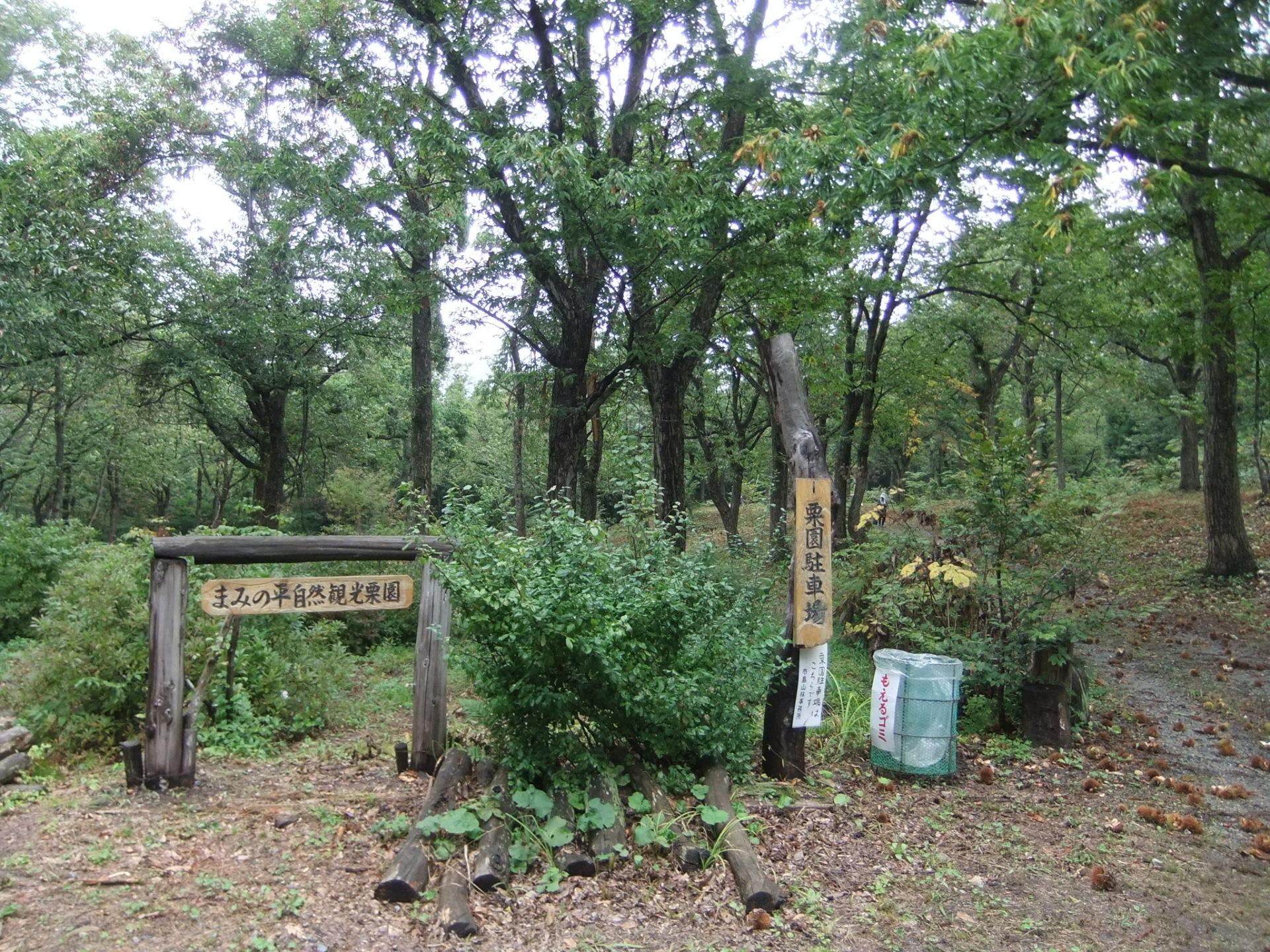 まみの平自然観光栗園の風景