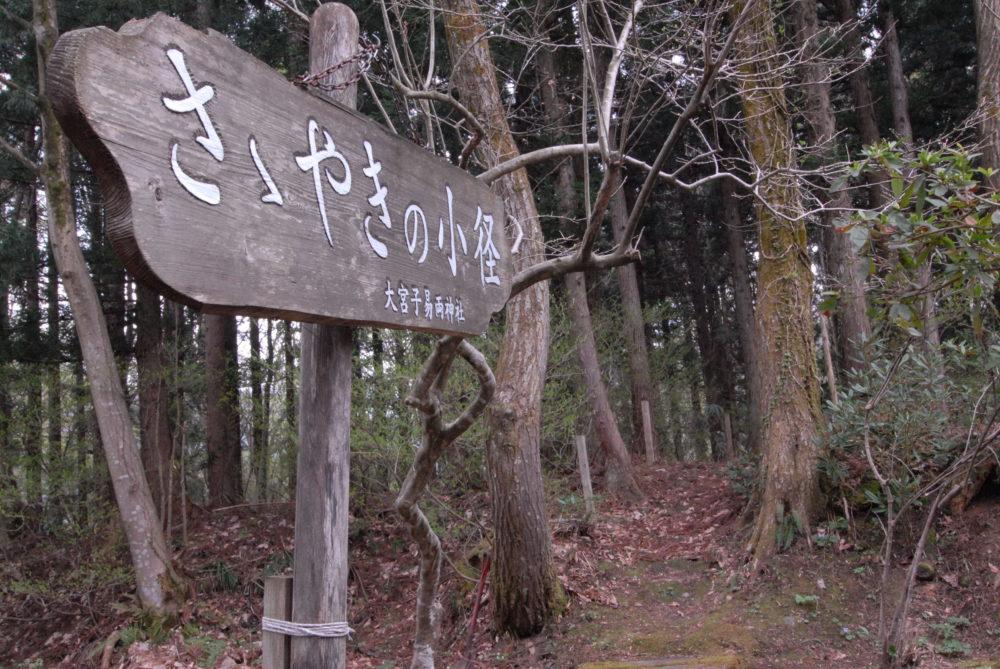 町ぶら(神社・小径)の風景