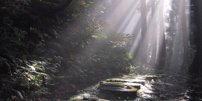 黒沢峠の風景