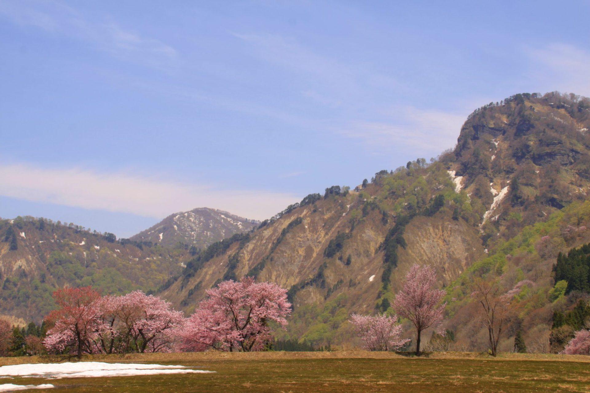 旧小玉川小中学校の風景